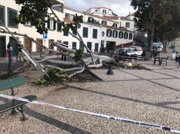 Photo of storm damage in Barreirinha