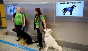 sniffer dogs at work in Helsinki