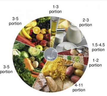 Calorie consumption represented by a food wheel