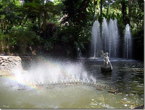 madeira news blog 0912 elaine west municipal gardens funchal