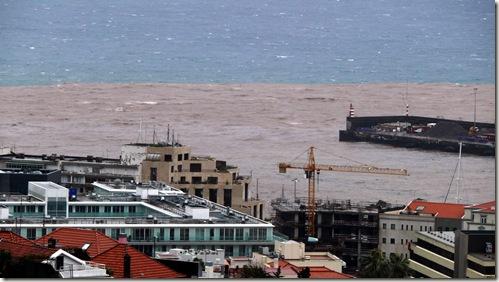 madeira news blog 1002 pete Madeira soil errosion