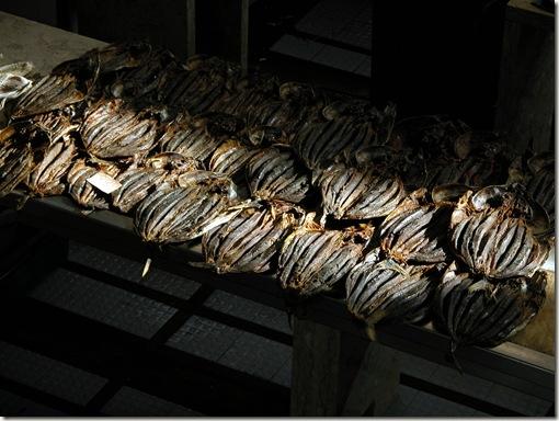 madeira news blog 1002 pete Fish Market Funchal