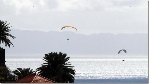 madeira news blog 1003 pete funchal hang gliders