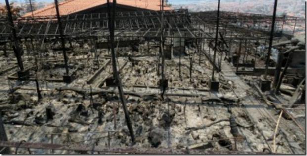 Photo of Jardim Orquídea, completely burnt out