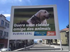 Local elections poster