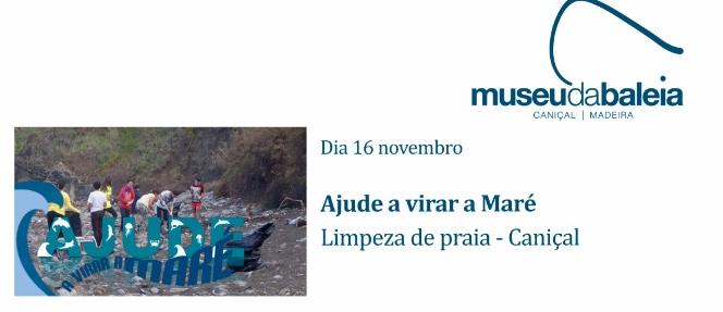 Whale Museum Madeira
