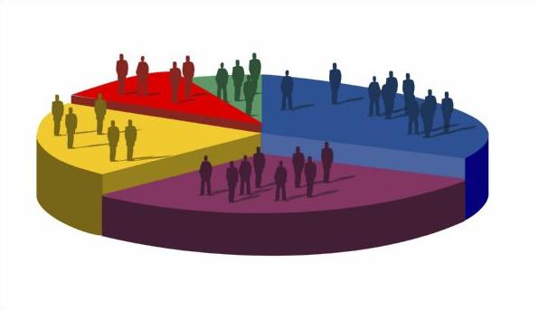 Demographics graphic