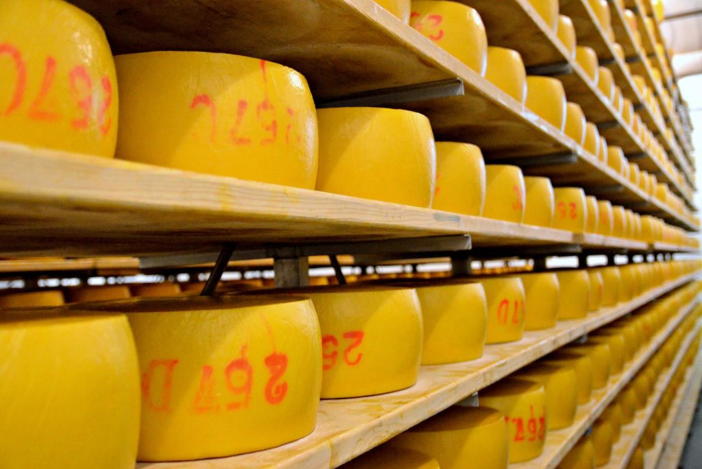 Racks of São Jorge Cheese